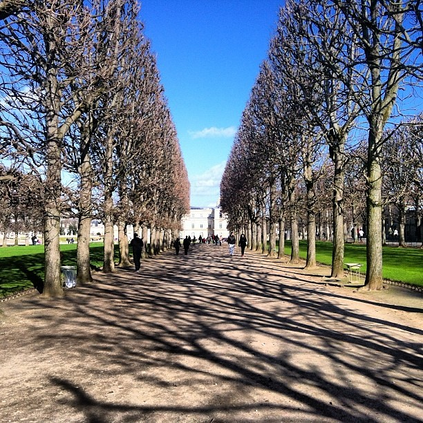 Shadows #paris #france #travel