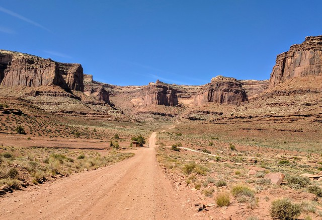 Looking up Shafer Trail