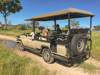 Morning Game Drive in der Kanana Concession