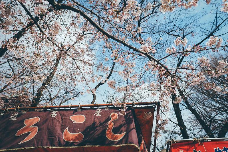 假日市集|上野公園
