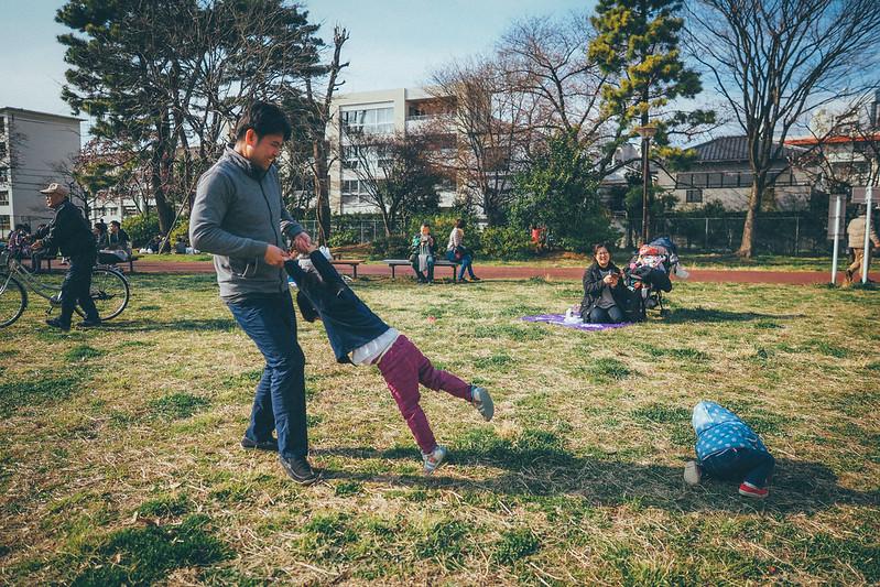 音無親水公園 櫻花|東京都 Tokyo