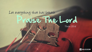 Praise The Lord | by jubileelewis