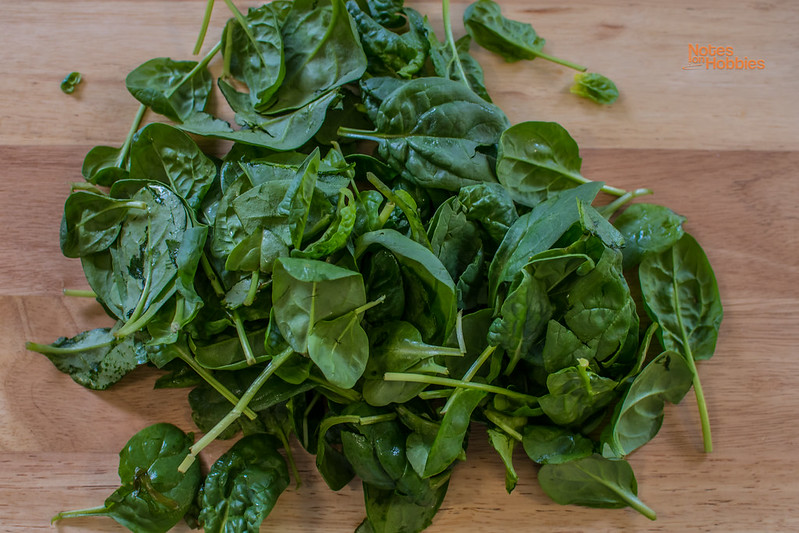 Spinach and Ricotta Ravioli in Mushroom Sauce