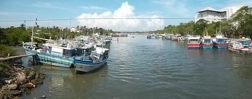 Fishing Fleet Negombo