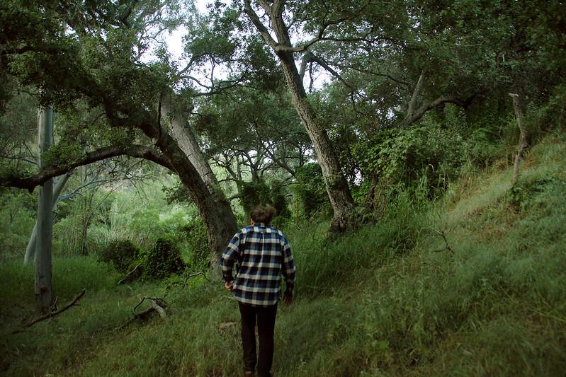 Elfin Forest