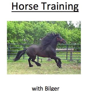 Horse Training with Bilger by R J Bilger