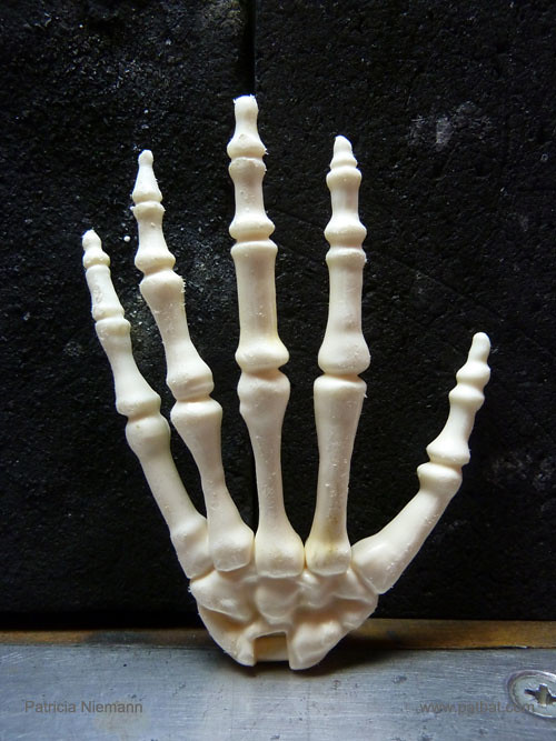 Skeletal Hand Plastic Surprise Gift This Bony Hand Made Flickr