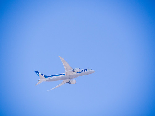 ANA's B787 JA820A SJC-NRT | by Yuxuan.fishy.Wang
