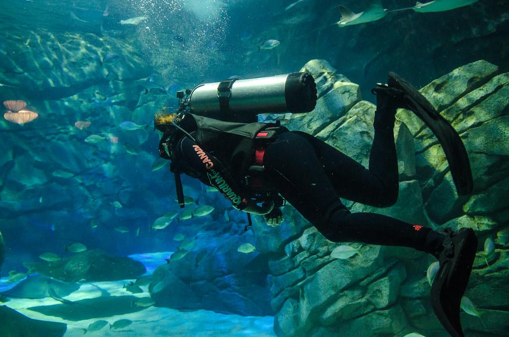 Scuba Tank With Diver Scuba Tank Diver