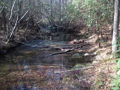 Guthrie Creek