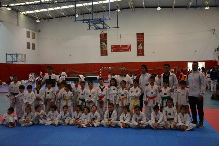 exhibicion taekwondo cadiz41
