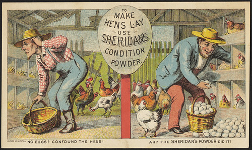 To make hens lay use Sheridan's Condition Powder. No eggs? Confound the hens! Ah? The Sheridan's powder did it! (front) | by Boston Public Library