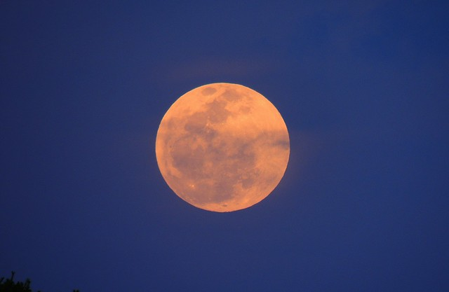 blood moon today in florida - photo #18