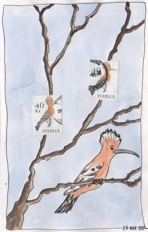 20170326 - swedish birds
