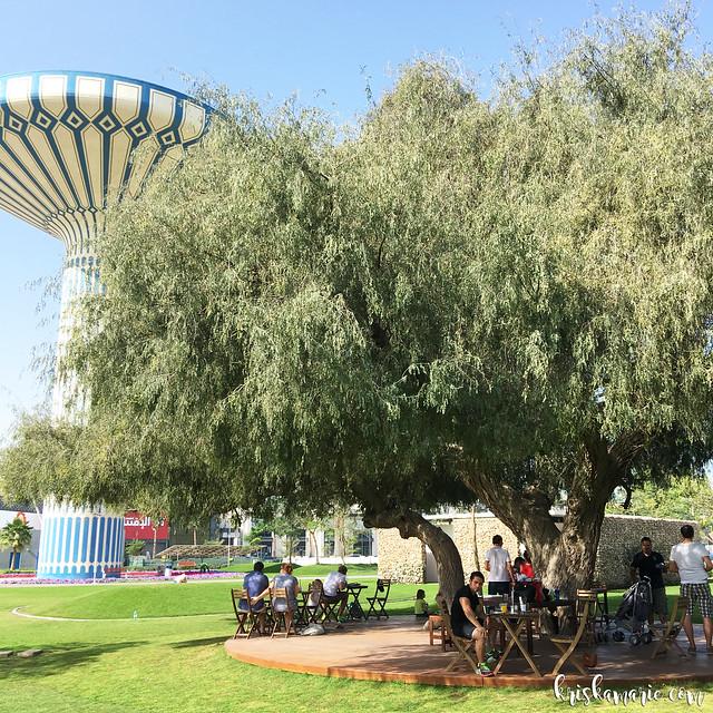 Inn The Park