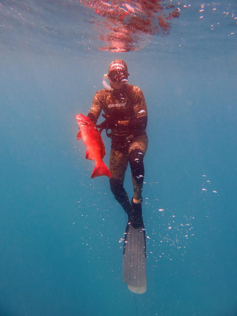 漁獵珊瑚礁魚類也是澳洲的重要休閒活動。圖片來源:詹姆斯庫克大學博士候選人Brock Bergseth提供。