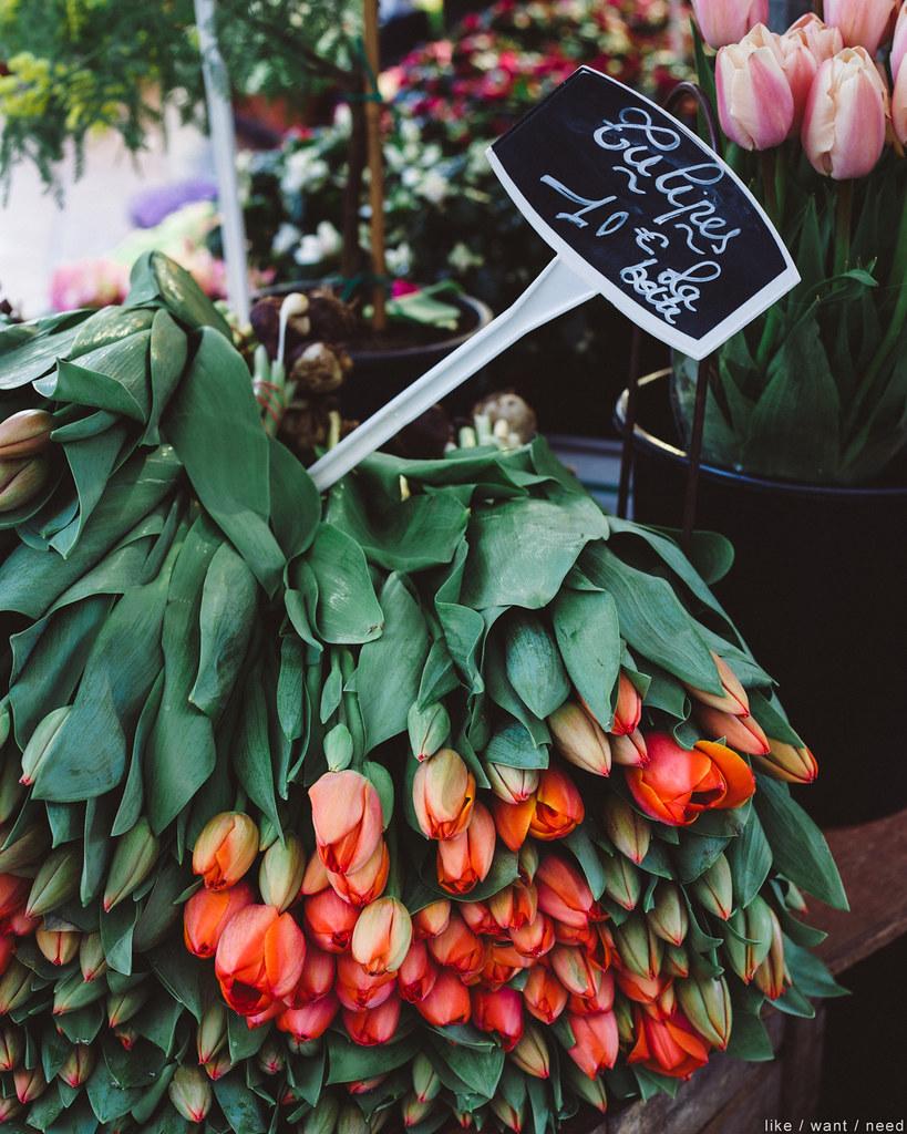 Fleurs, Rue Cler