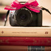 Photo a Day Challenge, January, 10 - Man Made. Books and photography ♥