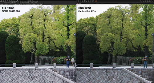 X3F vs DNG(Capture One 9)