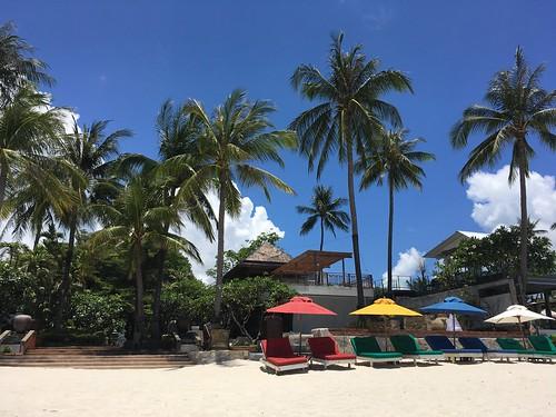 今日のサムイ島 4月11日 チャウエンビーチ
