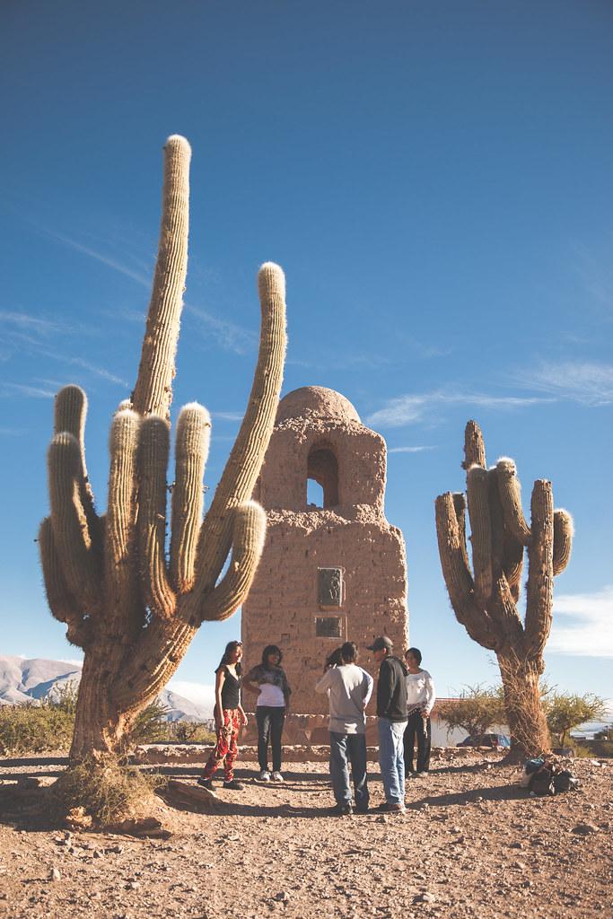 39 the saguaro cactus 39 argentina jujuy province humahuaca for Cactus argentina