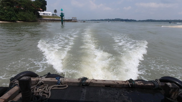 Tea-coloured water, sign of plankton bloom, off Changi Creek