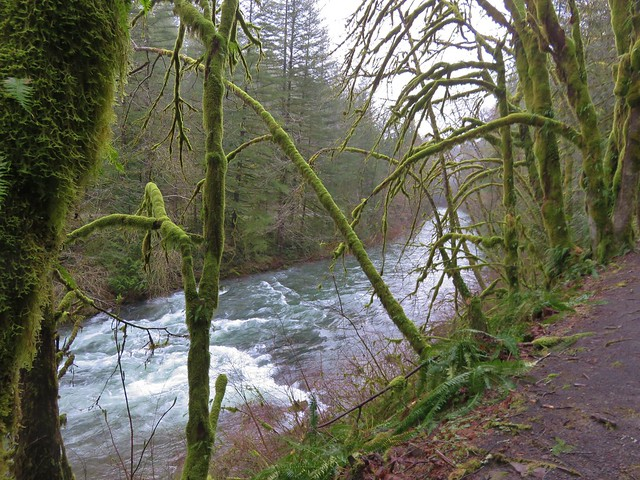 East Fork Lewis River