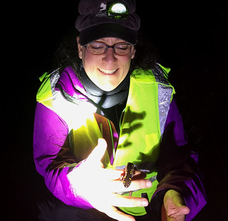 a photo of Brett holding a spotted salamander on a Big Night