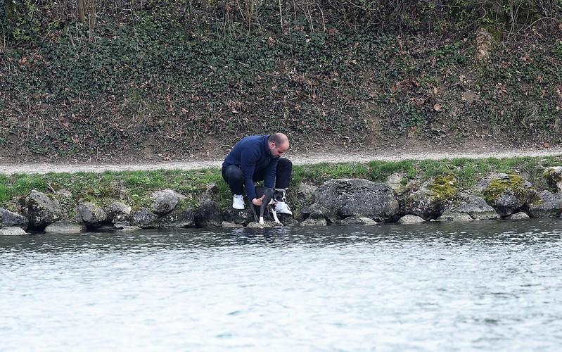 River Aar 24.03 (13)