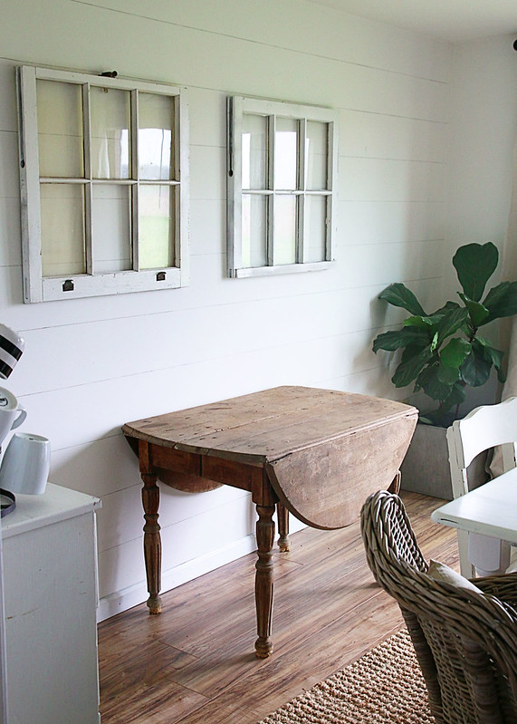 Old Table Windows Fiddle Leaf