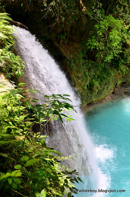 halfwhiteboy - kawasan falls, badian, cebu 16