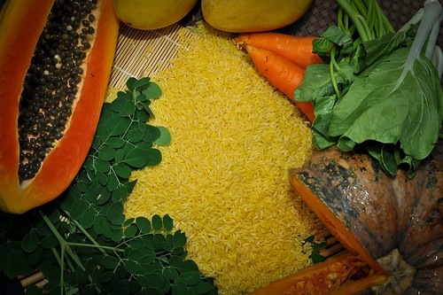 Golden Rice grain with beta carotene-rich foods GN7_0877-14 | by IRRI Images