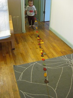 Connor loves the fall leaves | by vlnjodie