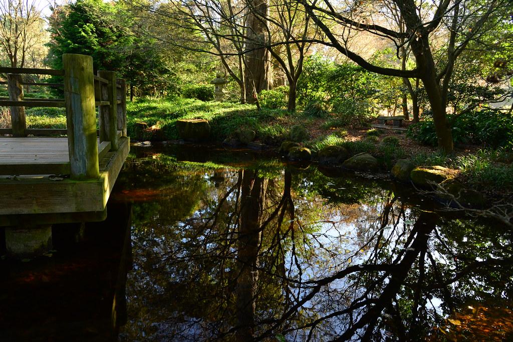 Botanical Gardens Golden Gate Park Strybing Arboretum Lorcan Keating Flickr