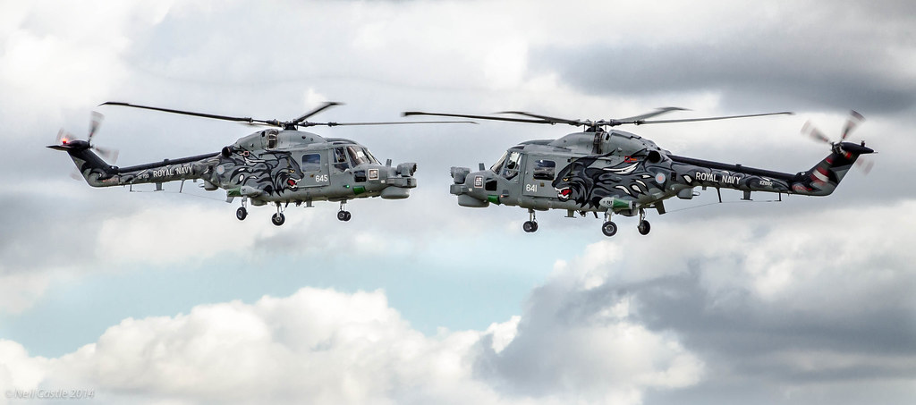 Black Royal Royal Navy Black Cats Lynx