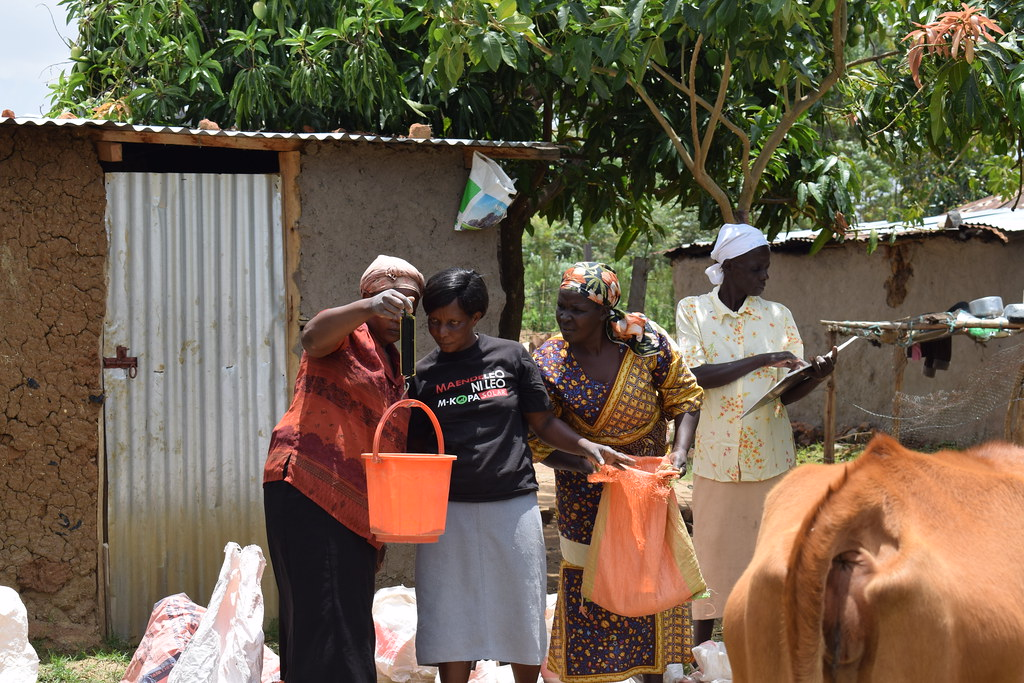 Follow-up visits to small-scale farmers trained in dairy production