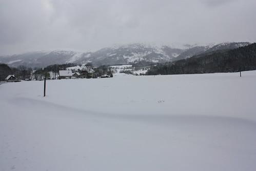 Gresse en Vercors - Front de neige