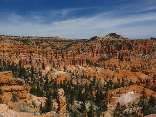 Some of the views from the Fairyland Trail, Bryce Canyon National Park, Utah