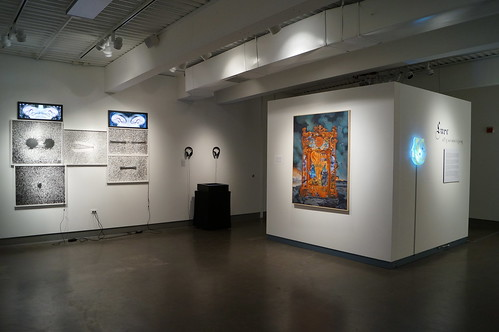 Installation view of Lure at San Diego Mesa College Art Gallery, Feb 2014 | by s myrland