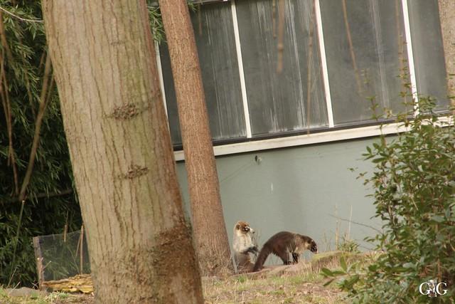 Ausflug Zoo Magdeburg 11.03.2017 Teil. 213