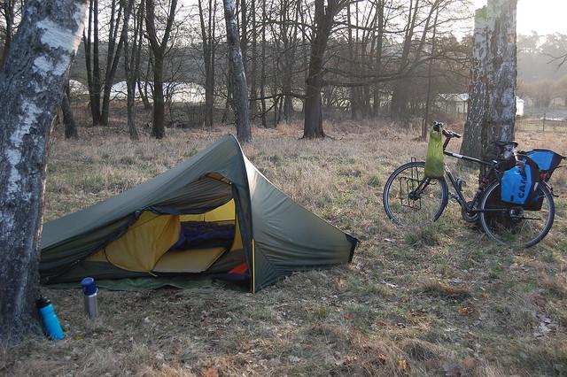 Bild: Zelt und Fahrrad im Morgenlicht auf einer Wiese mit Birken und Wald im Hintergrund