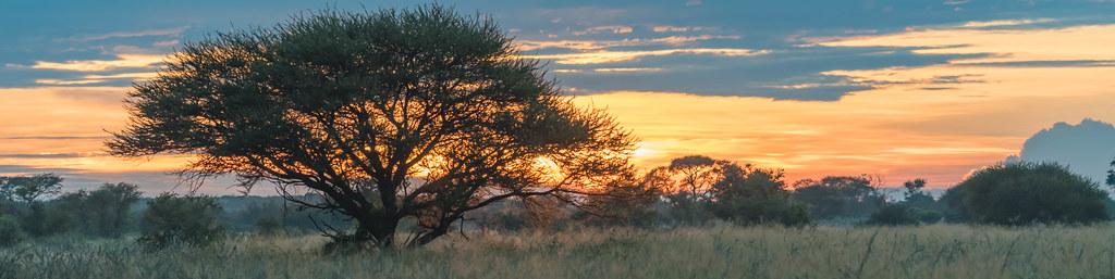 Sonenaufgang in der Central Kalahari