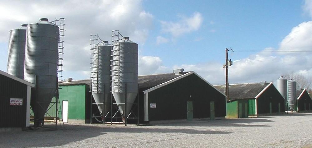 batiments agricoles, ciel bleu