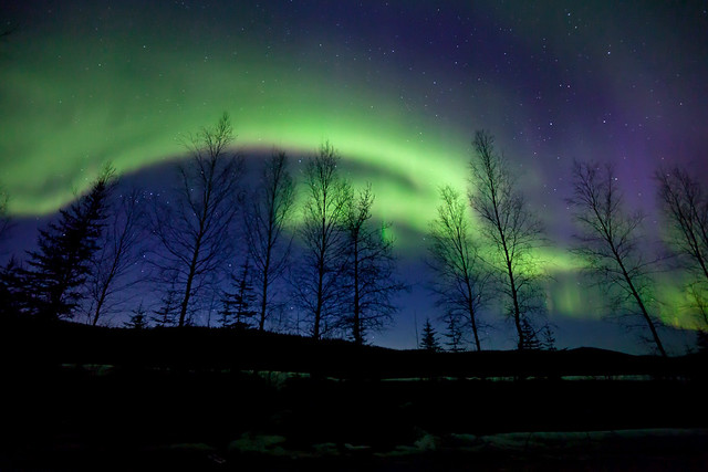 042017 - Spring Aurora over the still leafless trees