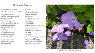 GloPoWriMo 42517 Periwinkle Places | by teach.eagle