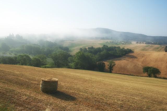Tuscany landscape awakens
