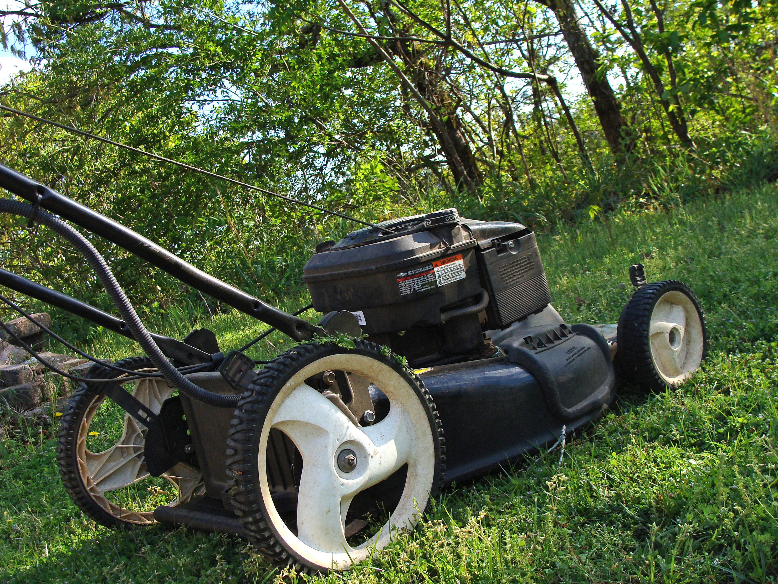 Mowing 101 how to have your best lawn yet for How often should you mow your lawn