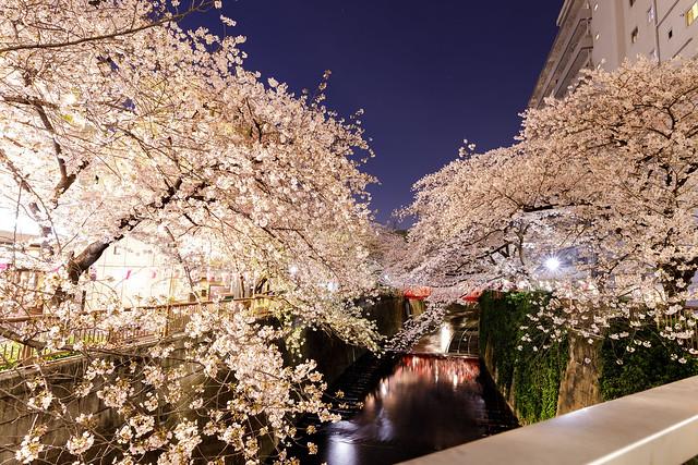 nakameguro_201704_01