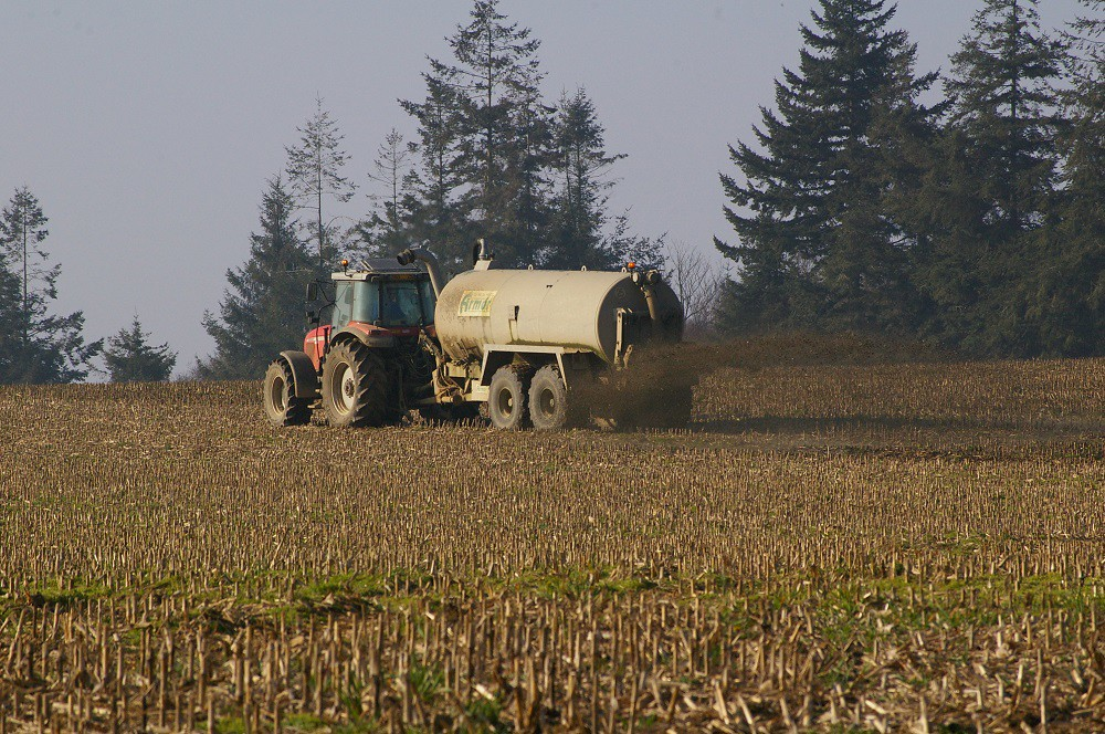 épandage lisier, champ, tracteur