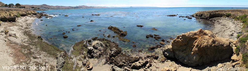 Image Result For Estero Bay